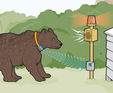 Gizmos and gadgets to help wildlife coexist with their human neighbors