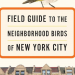 Field Guide to the Neighborhood Birds of New York City, by Leslie Day