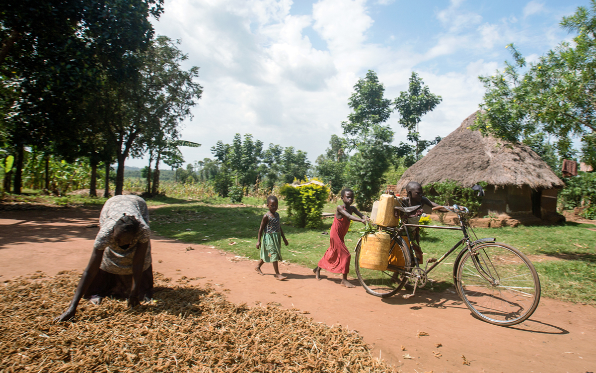 Frequent droughts have increased the distance villagers have to walk to get water in Uganda.