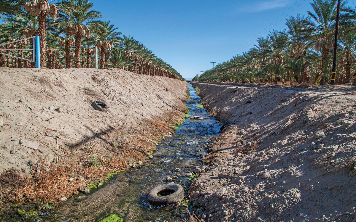 One water source the Salton Sea can count on is agricultural runoff.