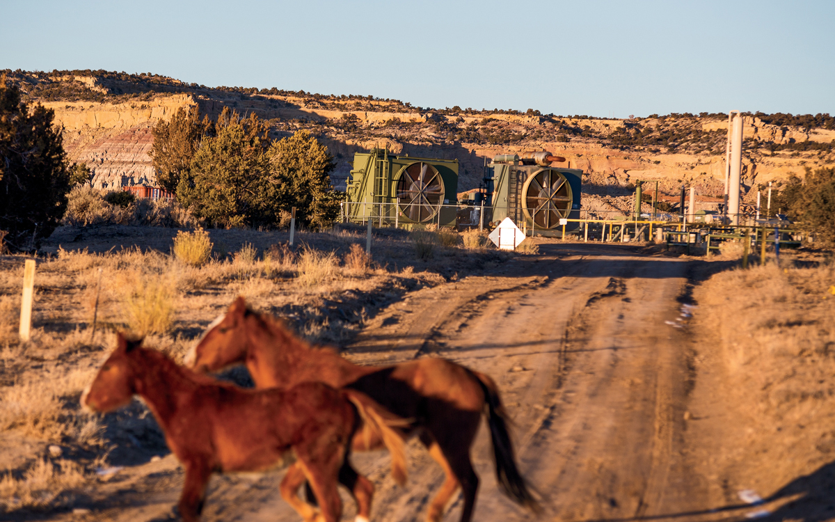 cd65217a7f62 Feral horses roam the high desert landscape dotted with fracking equipment  in Counselor