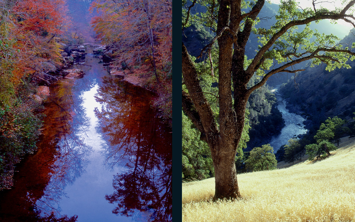 In Celebration of the 50th Anniversary of the Wild and Scenic Rivers