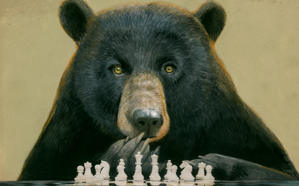 Illustration of a bear playing chess.