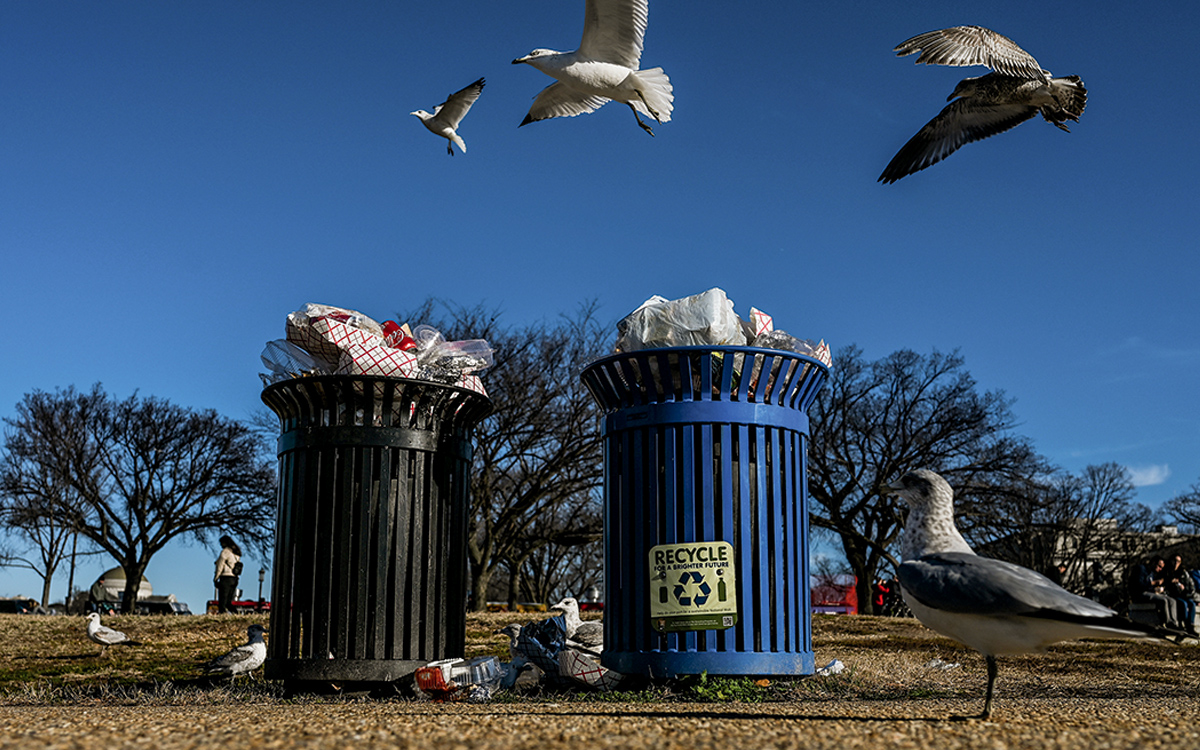 the us recycling system is garbage | sierra club